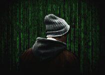 È un ragazzo di 17 anni l'hacker che è riuscito ad infiltrarsi nei sistemi informatici di Twitter