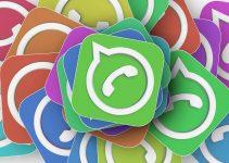 WhatsApp e l'avviso sui nuovi termini e l'informativa sulla privacy: perché per noi non cambia nulla